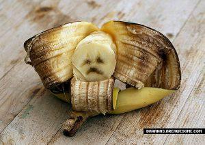 A sad banana, yesterday.